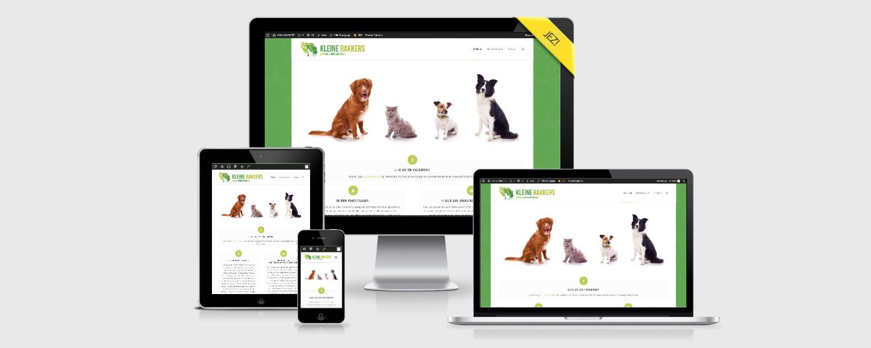 Eigen Zaak Starten > JEZ Branding Agency - Webdesign